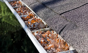 gutter cleaning Pittsburgh